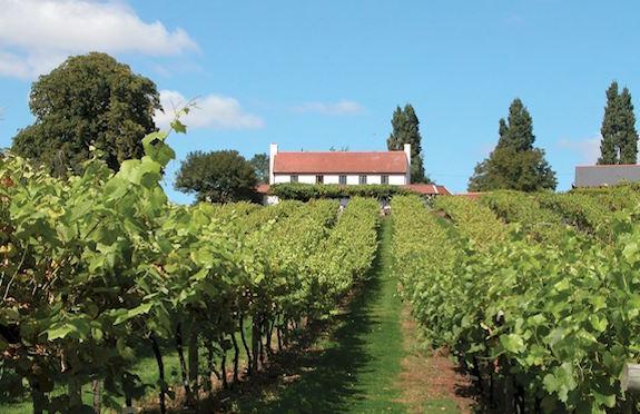 Three Choirs Vineyards, Gloucestershire