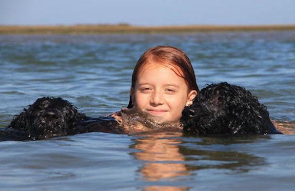 Child swimming with Portuguese water dogs, Conrad Algarve