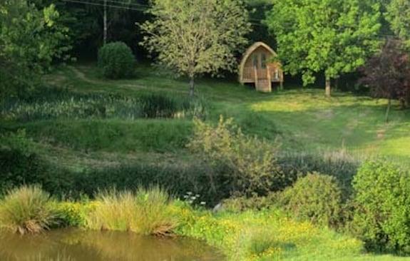 Fleur's Retreat, Devon, Canopy & Stars