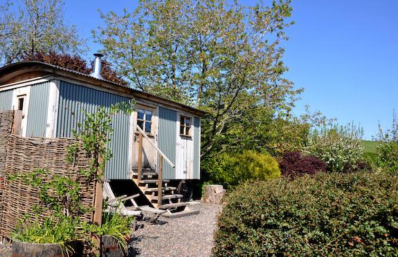 The Gardener's Hut, Scottish Borders, Canopy & Stars