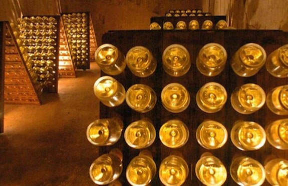 Wine cellar tour, Grape Escapes