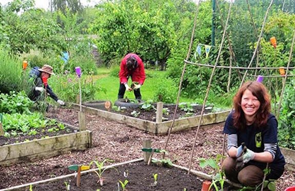 TCV food-growing project