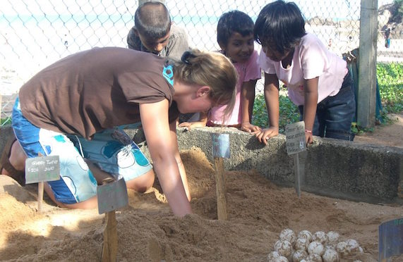 Turtle conservation in Sri Lanka/Volunteering Journeys