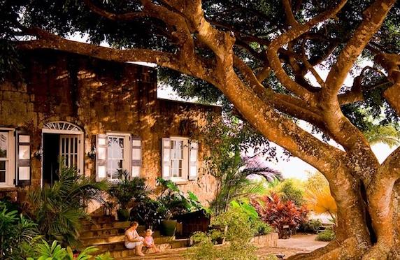 Montpelier Plantation, Nevis