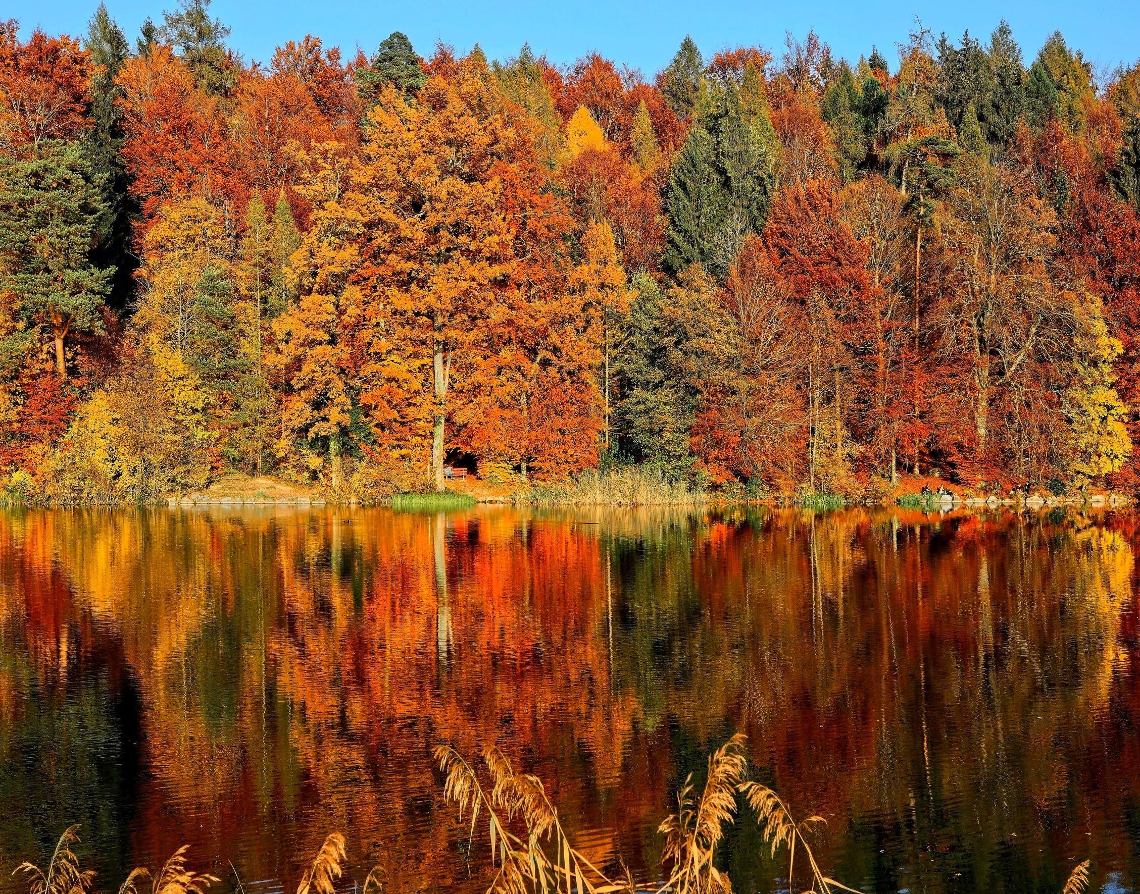 8 Beautiful Cashmere Wraps In Autumn Colours Image