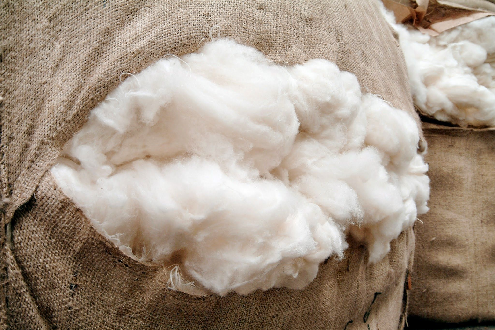 Guide To Washing & Caring For Your Cashmere Image